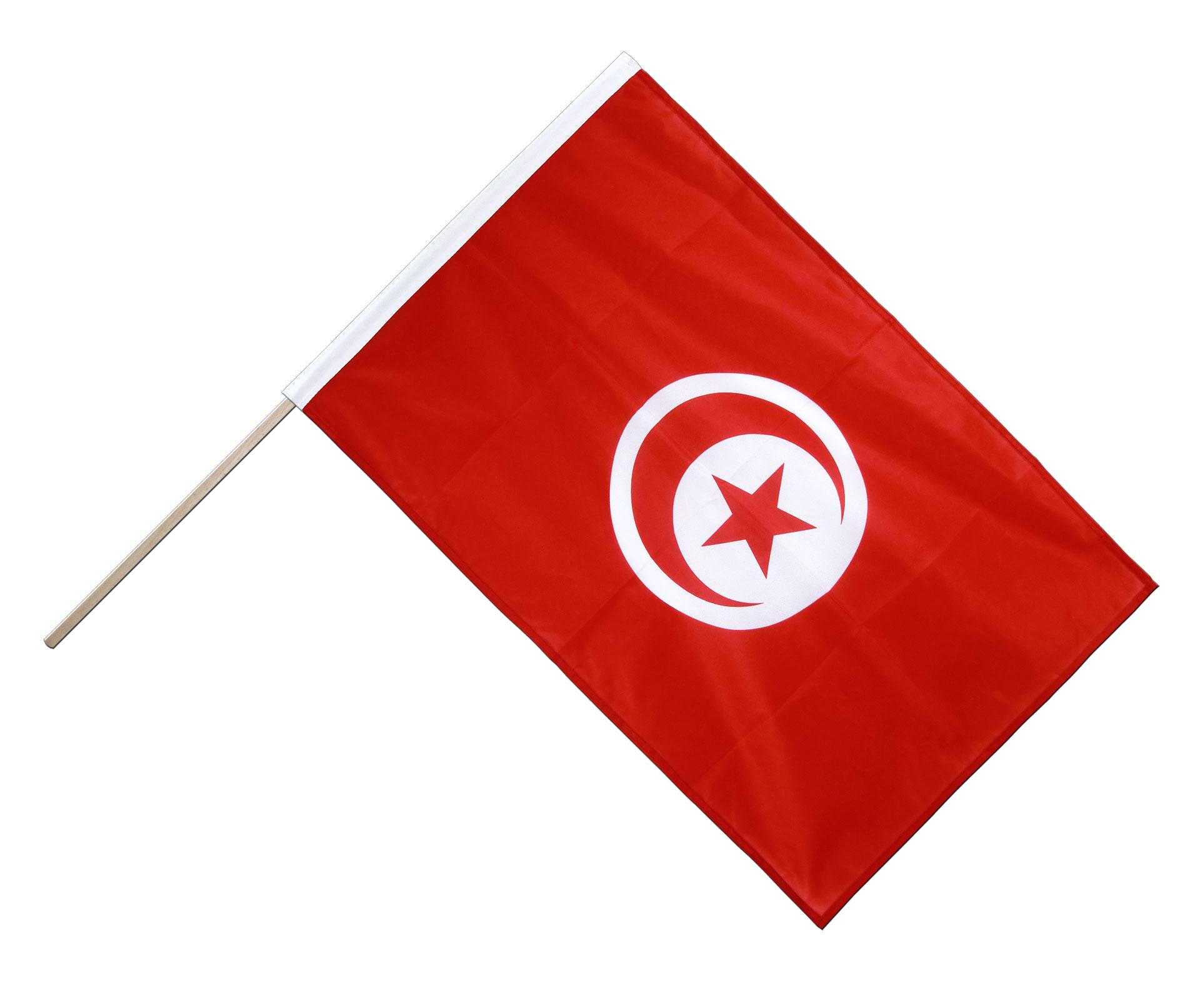 поразительное, тунис флаг фото картинки приводим